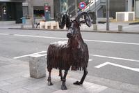 立川の動物たち-羊